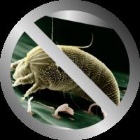 antibacterial2